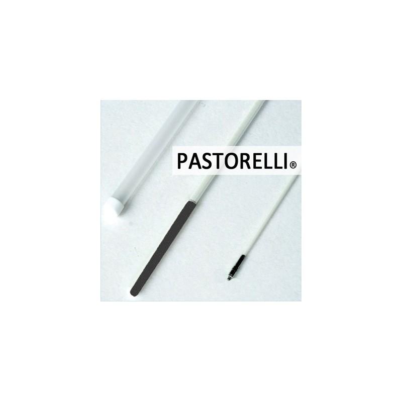 Stab mit schwarz grip Pastorelli